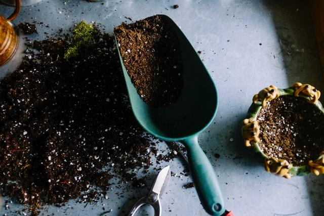 Je tuin gelijk opknappen na een verhuizing